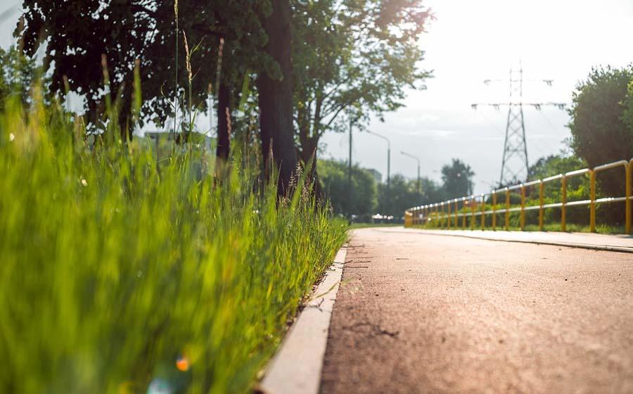 Pflanzenüberwuchs und Straßenreinigung